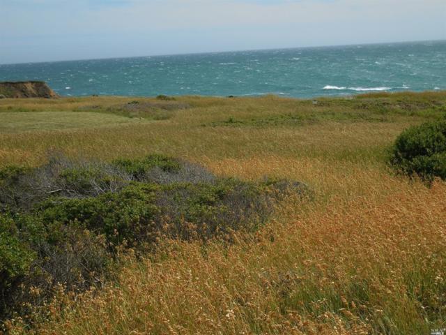 37705 Breaker Reach, The Sea Ranch, CA 95497 (#21911768) :: W Real Estate | Luxury Team