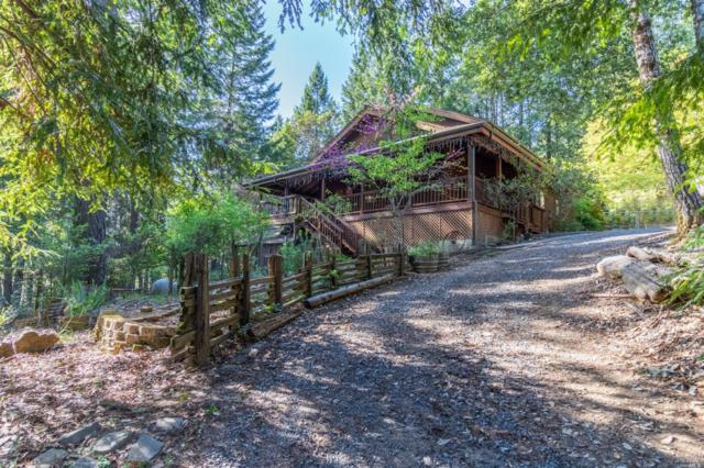 5356 Wild Iris Lane, Willits, CA 95490 (#21911792) :: Intero Real Estate Services