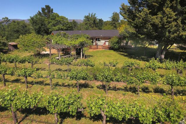 1233 Stevens Gate Road, Sonoma, CA 95476 (#21911897) :: W Real Estate | Luxury Team