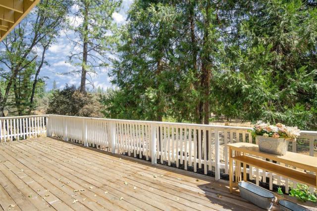 12032 Hidden Valley Road, Grass Valley, CA 95949 (#21911986) :: W Real Estate | Luxury Team