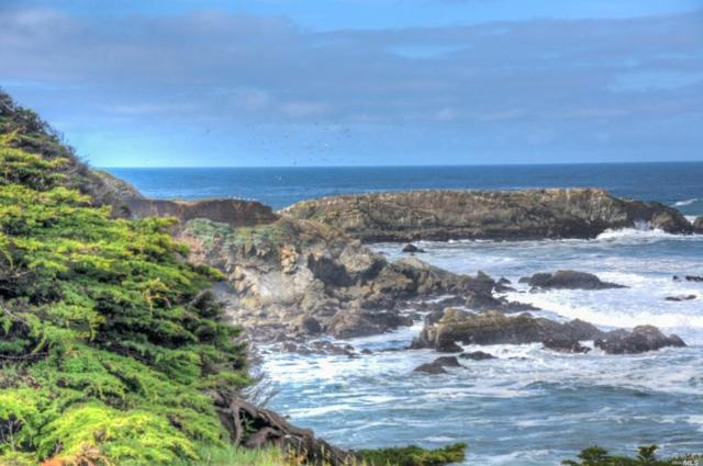 250 Ballast Road, The Sea Ranch, CA 95497 (#21912329) :: W Real Estate | Luxury Team