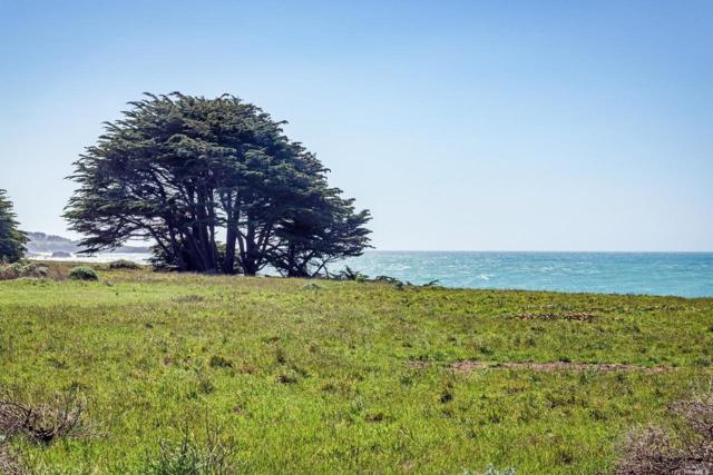 36925 Green Cove Drive, The Sea Ranch, CA 95497 (#21912356) :: W Real Estate | Luxury Team