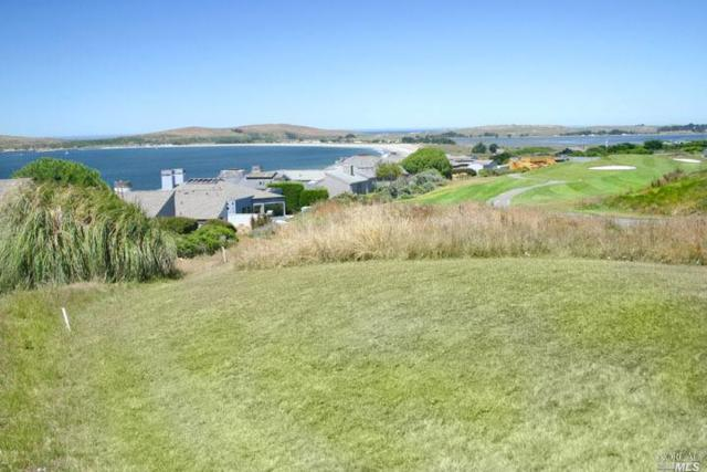 563 Gull Drive, Bodega Bay, CA 94923 (#21912427) :: Lisa Perotti | Zephyr Real Estate