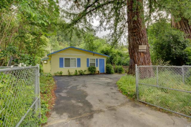 17755 Orchard Avenue, Guerneville, CA 95446 (#21912542) :: RE/MAX GOLD