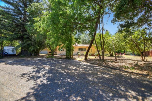 395 Dechene Avenue, Sonoma, CA 95476 (#21912546) :: RE/MAX GOLD