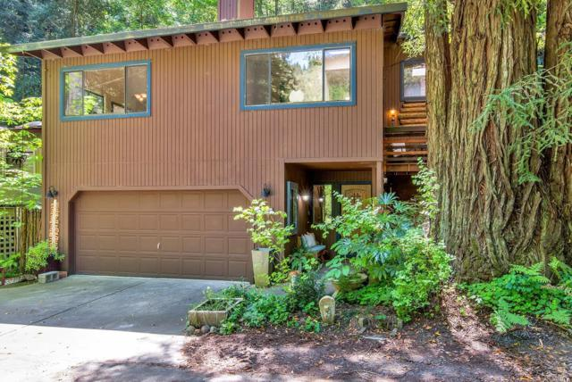 14700 Cherry Street, Guerneville, CA 95446 (#21912595) :: RE/MAX GOLD