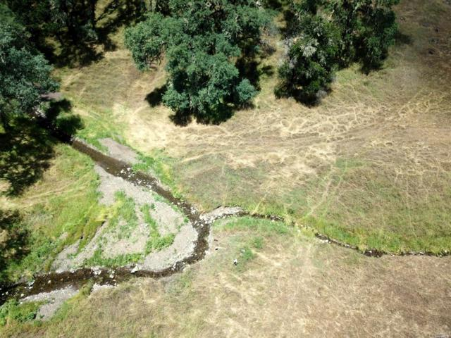 0 Capell Valley Road, Napa, CA 94559 (#21912863) :: Lisa Perotti | Zephyr Real Estate