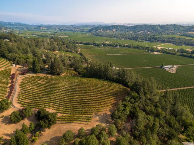 6343 W Dry Creek Road, Healdsburg, CA 95448 (#21912937) :: RE/MAX GOLD