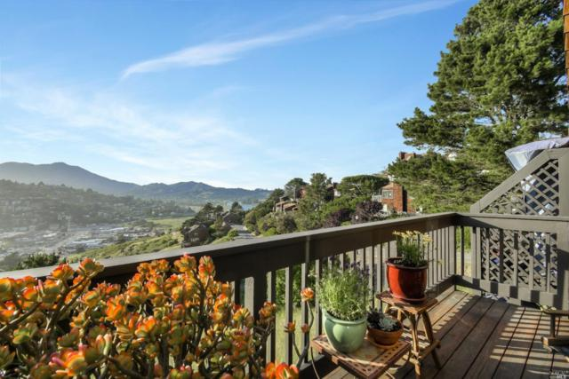 404 Donahue Street, Sausalito, CA 94965 (#21913038) :: Lisa Perotti | Zephyr Real Estate