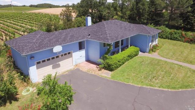 10801 Hillview Road, Windsor, CA 95492 (#21913118) :: Rapisarda Real Estate