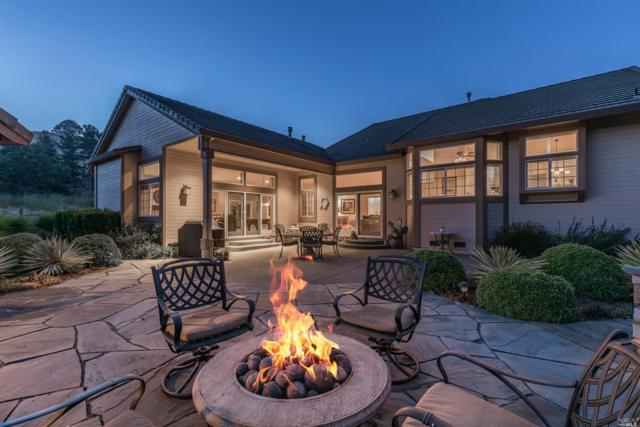 227 Photinia Place, Petaluma, CA 94952 (#21913215) :: W Real Estate | Luxury Team