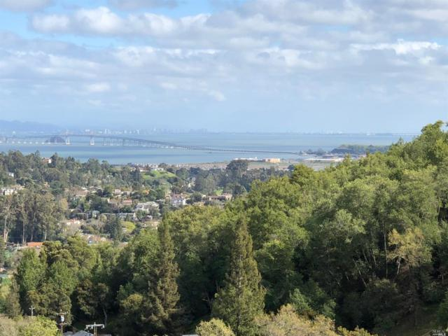 273 Coleman Drive, San Rafael, CA 94901 (#21913244) :: Rapisarda Real Estate