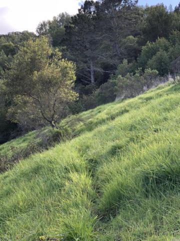 275 Coleman Drive, San Rafael, CA 94901 (#21913245) :: Rapisarda Real Estate