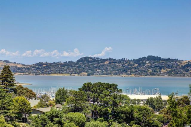 112 Lincoln Drive, Sausalito, CA 94965 (#21913952) :: W Real Estate | Luxury Team