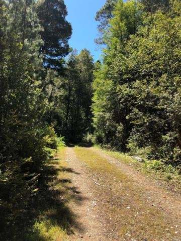 25715 Ten Mile Road, Point Arena, CA 95468 (#21914642) :: Rapisarda Real Estate