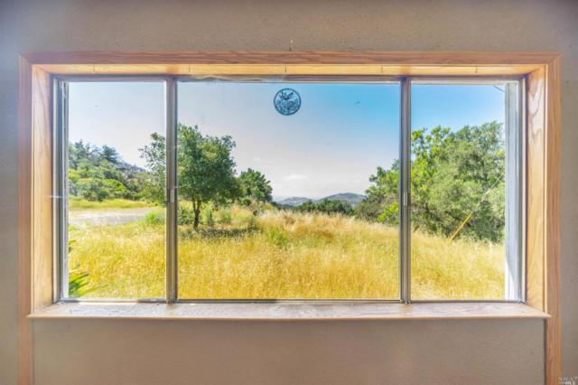 2440 Soda Canyon Road, Napa, CA 94558 (#21914678) :: Lisa Perotti | Zephyr Real Estate