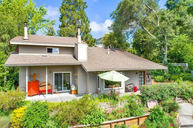491 Vine Avenue, Sebastopol, CA 95472 (#21914690) :: W Real Estate | Luxury Team