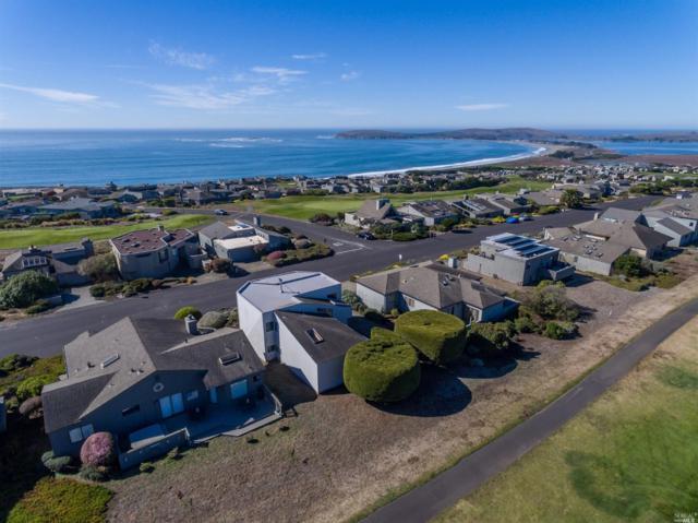 21002 Heron Drive, Bodega Bay, CA 94923 (#21914717) :: Lisa Perotti | Zephyr Real Estate