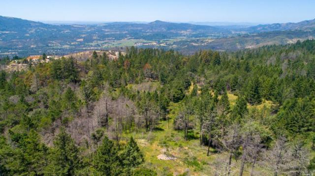 3199 Trinity Road, Glen Ellen, CA 95442 (#21914768) :: RE/MAX GOLD