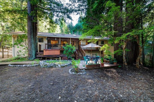 1101 Perch Lane, Willits, CA 95490 (#21914996) :: W Real Estate | Luxury Team