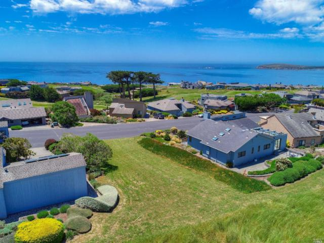 20922 Heron Drive, Bodega Bay, CA 94923 (#21915109) :: Lisa Perotti | Zephyr Real Estate