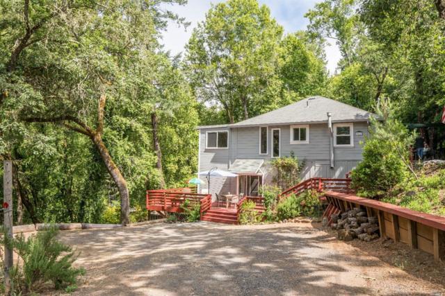 10838 Rio Vista Road, Forestville, CA 95436 (#21915195) :: Lisa Perotti | Zephyr Real Estate