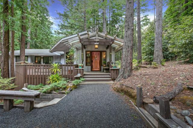 22059 Rust Court, Jenner, CA 95450 (#21915334) :: Rapisarda Real Estate