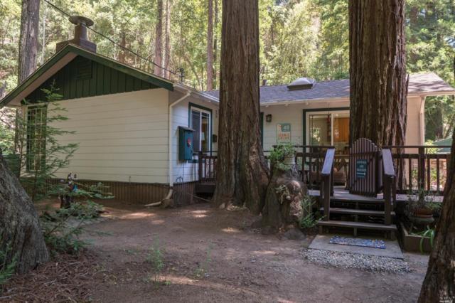 5360 Mill Creek Road, Healdsburg, CA 95448 (#21915513) :: W Real Estate | Luxury Team