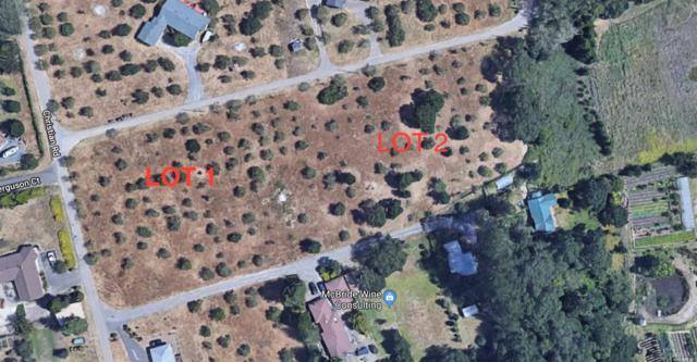 Sebastopol, CA 95472 :: Lisa Perotti | Zephyr Real Estate