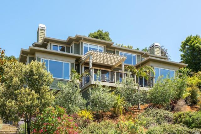 53 Inverness Drive, San Rafael, CA 94901 (#21915665) :: Lisa Imhoff   Coldwell Banker Kappel Gateway Realty