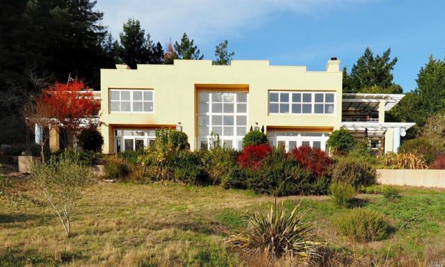 18835 Fitzpatrick Lane, Occidental, CA 95465 (#21915754) :: Intero Real Estate Services