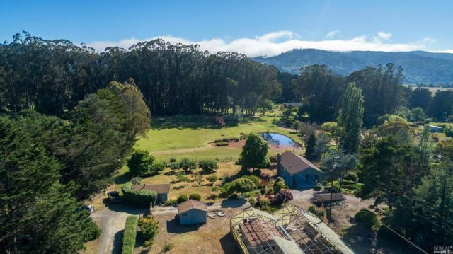 12075 State Route 1, Pt. Reyes Station, CA 94956 (#21915887) :: Lisa Perotti | Zephyr Real Estate