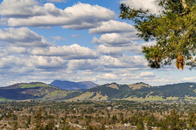 4650 Bennett View Drive, Santa Rosa, CA 95404 (#21915988) :: W Real Estate   Luxury Team