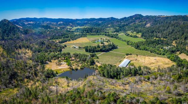 9000 Franz Valley Road, Calistoga, CA 94515 (#21916169) :: Intero Real Estate Services