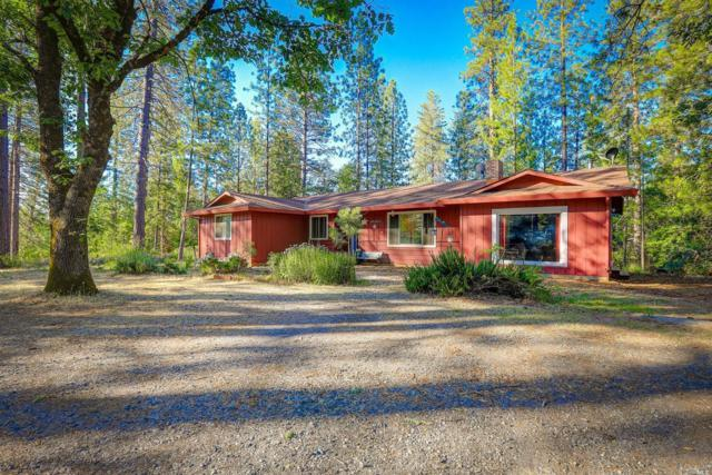 13337 Squirrel Creek Road, Grass Valley, CA 95945 (#21916213) :: Intero Real Estate Services