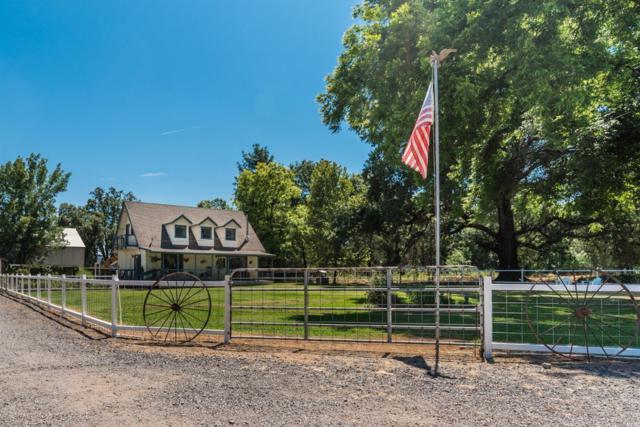10171 Furber Lane, Potter Valley, CA 95469 (#21916653) :: Golden Gate Sotheby's International Realty