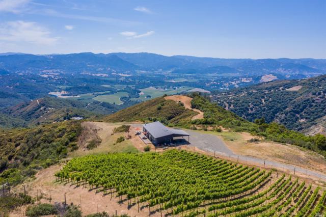 8435 Highway 175 Highway, Hopland, CA 95449 (#21917225) :: W Real Estate | Luxury Team