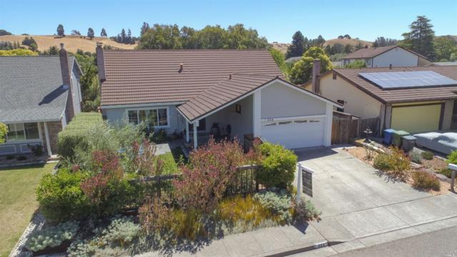 224 Ridgeview Drive, Petaluma, CA 94952 (#21917230) :: Intero Real Estate Services
