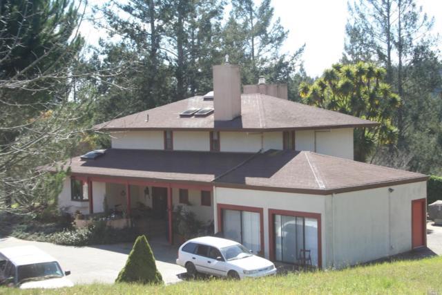 13200 Fiori Lane, Sebastopol, CA 95472 (#21917607) :: Intero Real Estate Services