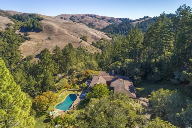 54 Los Pinos Spur, Nicasio, CA 94946 (#21917766) :: Intero Real Estate Services