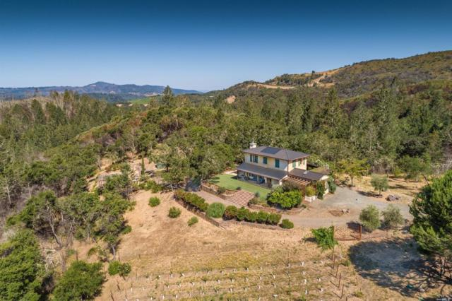 1150 Nuns Canyon Road, Glen Ellen, CA 95442 (#21918138) :: Intero Real Estate Services