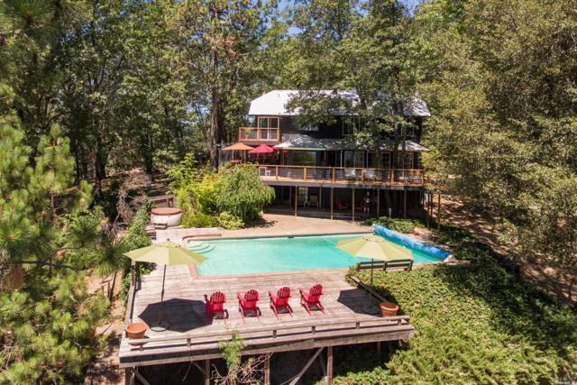 13530 Casale Drive, Loch Lomond, CA 95461 (#21918236) :: Rapisarda Real Estate