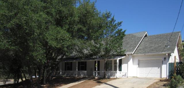 2676 Harness Drive, Pope Valley, CA 94567 (#21918341) :: Intero Real Estate Services