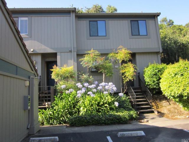 204 Escallonia Drive, Novato, CA 94945 (#21918351) :: Intero Real Estate Services