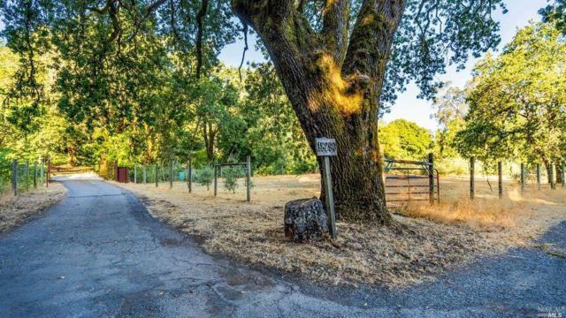 Calistoga, CA 94515 :: Lisa Perotti | Zephyr Real Estate