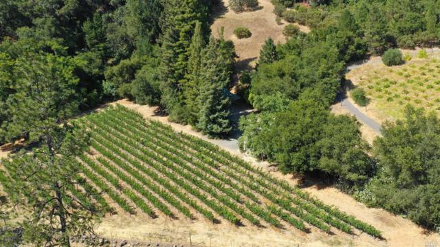 3588 Silverado Trail, St. Helena, CA 94574 (#21918389) :: W Real Estate | Luxury Team