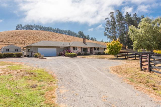1364 Valley Ford Freestone Road, Valley Ford, CA 94972 (#21918419) :: RE/MAX GOLD