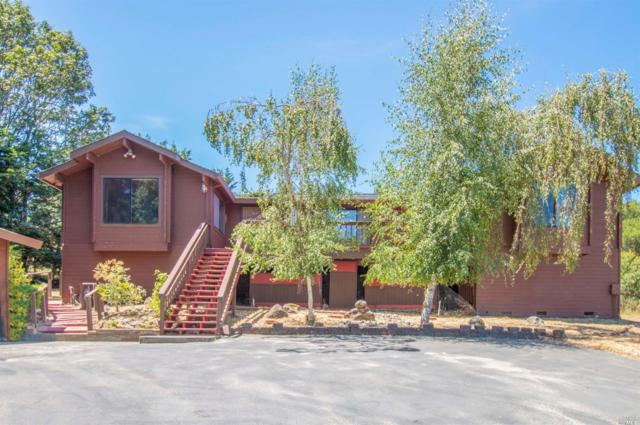 1410 Darby Road, Sebastopol, CA 95472 (#21918639) :: Intero Real Estate Services