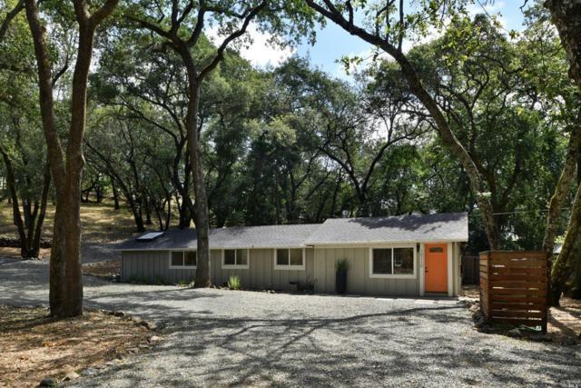 10110 Brooks Road, Windsor, CA 95492 (#21918660) :: W Real Estate | Luxury Team