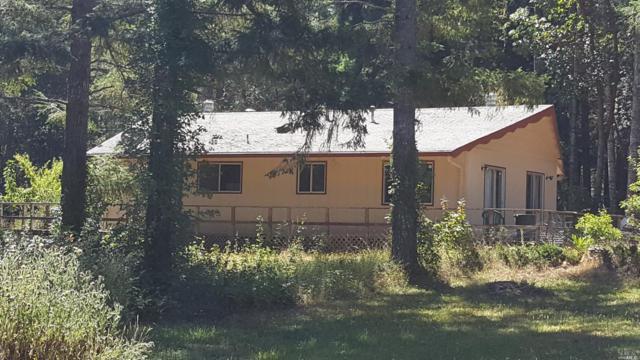 19751 Gschwend Road, Philo, CA 95466 (#21918834) :: W Real Estate | Luxury Team